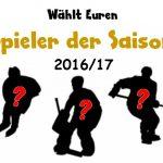 Wählt Euren Spieler der Saison 2016/17